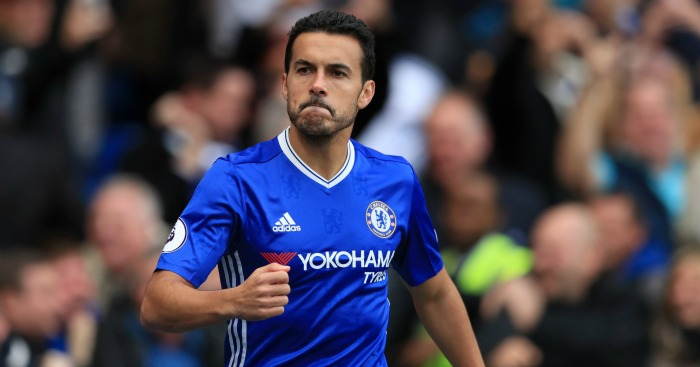 Image result for pedro